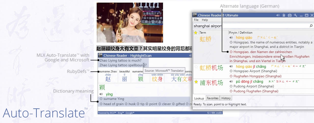 MDBG Chinese Reader 8 - Translate and MLX Auto-translate
